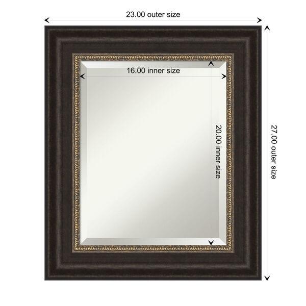 Paragon Bronze 23W X 27H-Inch Bathroom Vanity Wall Mirror, image 6