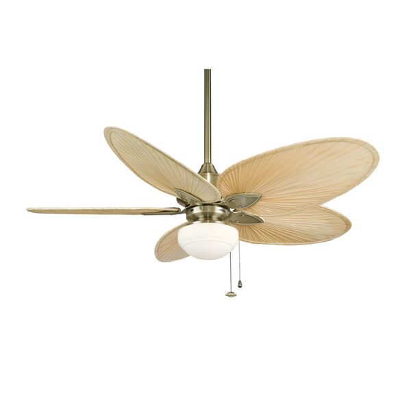 Windpointe Antique Brass Ceiling Fan with Narrow Oval Natural Palm Blades, image 5