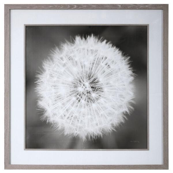Dandelion Seedhead Black and White Seedhead Framed Print, image 1
