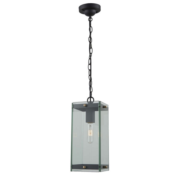 Bradgate Matte Black and Harvest Brass Eight-Inch One-Light Outdoor Mini Pendant, image 1