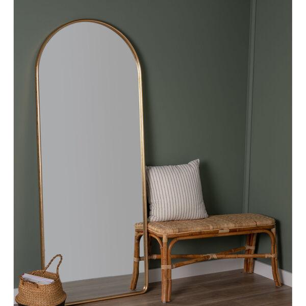 Colca Gold 68-Inch x 28-Inch Floor Mirror, image 1