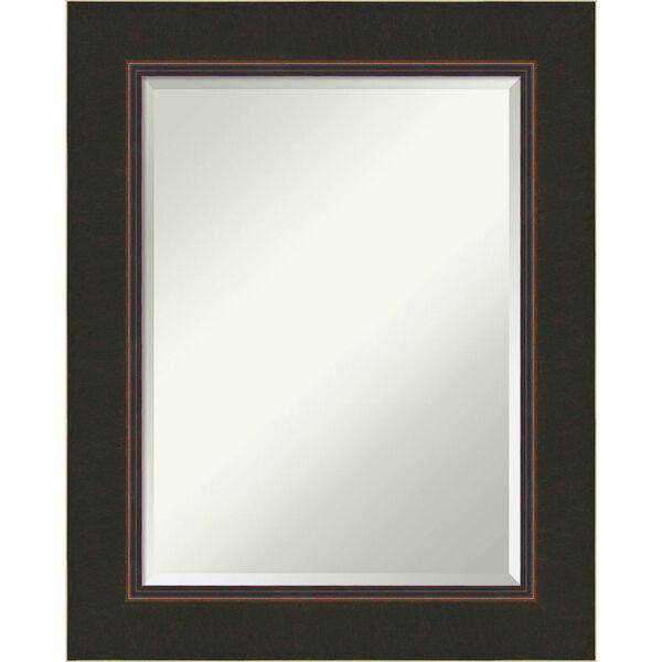 Milano Bronze 24W X 30H-Inch Bathroom Vanity Wall Mirror, image 1