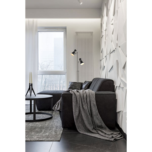 Soriano Matte Black and Brushed Nickel Two-Light Floor Lamp, image 2