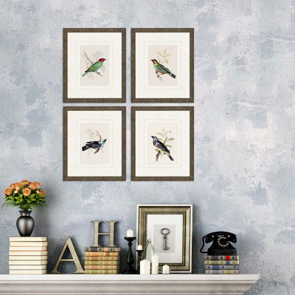 On Perch II Multicolor Framed Art, Set of Four, image 2
