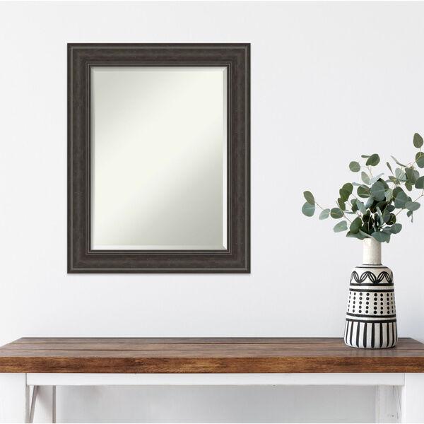 Shipwreck Gray 23W X 29H-Inch Bathroom Vanity Wall Mirror, image 5