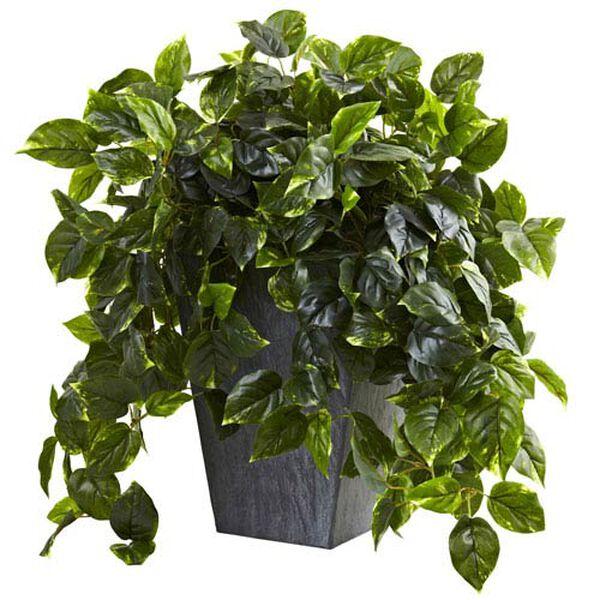 Green Hanging Pothos with Slate Planter, image 1