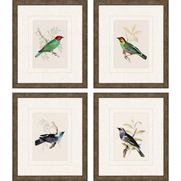 On Perch II Multicolor Framed Art, Set of Four, image 1
