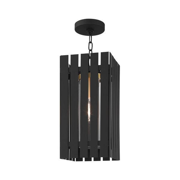 Greenwich Black and Satin Brass One-Light Outdoor Pendant Lantern, image 3