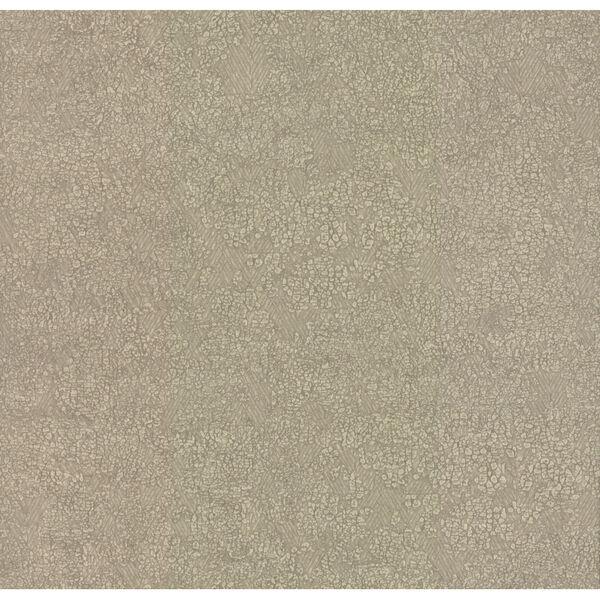 Antonina Vella Elegant Earth Beige Weathered Textures Wallpaper, image 2