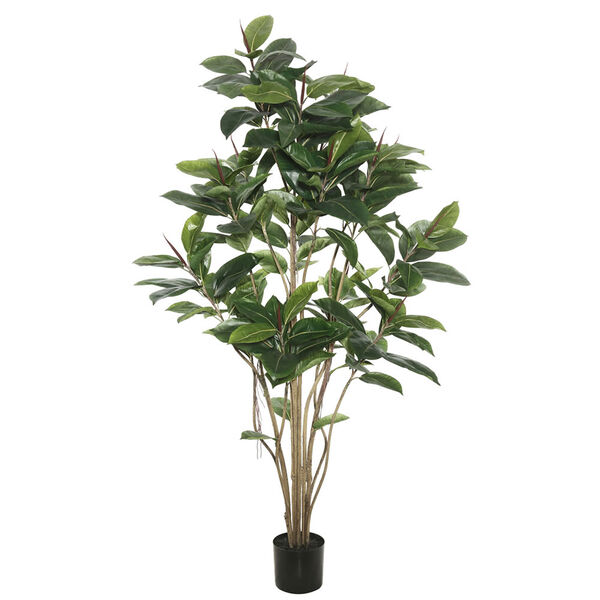 5 Ft. Potted Rubber Tree, image 1