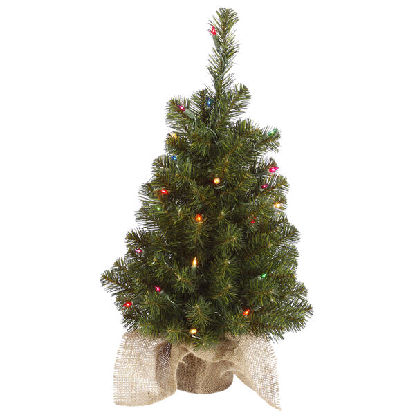 Felton Pine Green 24-Inch Tree with 35 Multicolor Lights, image 1