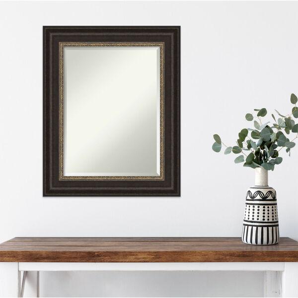 Paragon Bronze 25W X 31H-Inch Bathroom Vanity Wall Mirror, image 5