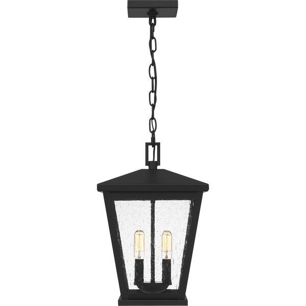 Joffrey Matte Black Two-Light Outdoor Pendant, image 3