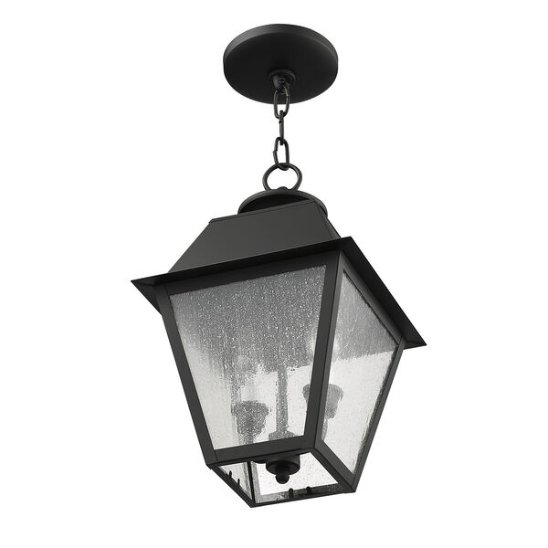 Mansfield Black Two-Light Outdoor Pendant, image 5