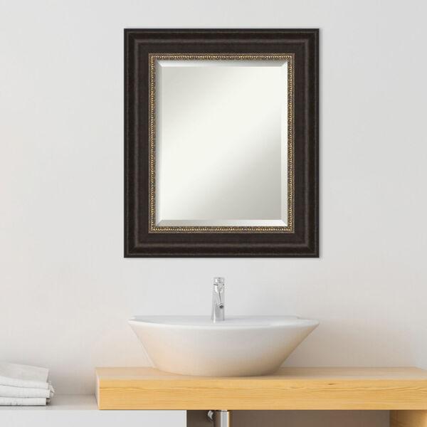 Paragon Bronze 23W X 27H-Inch Bathroom Vanity Wall Mirror, image 3