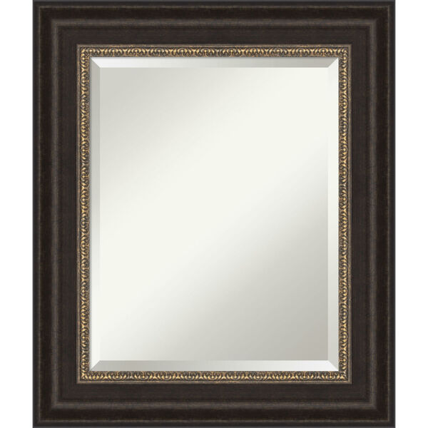 Bronze 22W X 26H-Inch Bathroom Vanity Wall Mirror, image 1