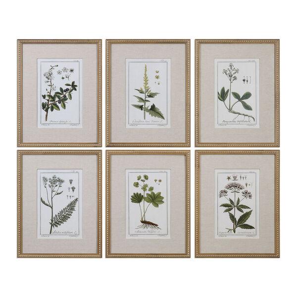 Green Floral Botanical Study Prints, Set of 6, image 1