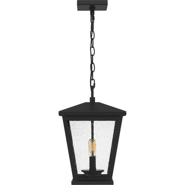 Joffrey Matte Black Two-Light Outdoor Pendant, image 4