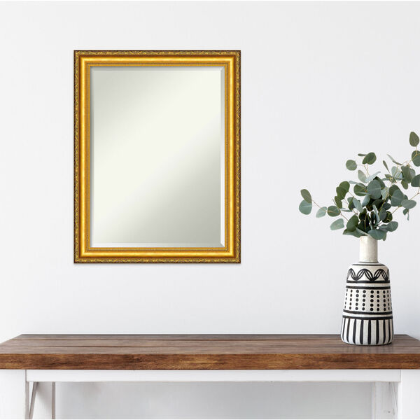 Colonial Gold 22W X 28H-Inch Decorative Wall Mirror, image 6