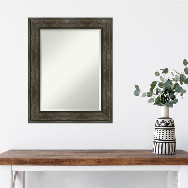 Rail Brown 24W X 30H-Inch Bathroom Vanity Wall Mirror, image 5