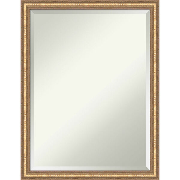 Fluted Champagne 20W X 26H-Inch Decorative Wall Mirror, image 1