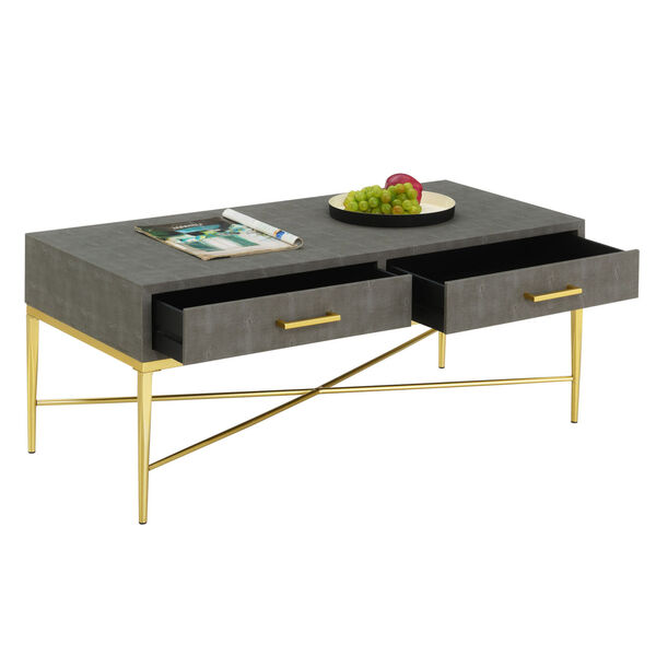 Gray and Gold 18-Inch Ashley Coffee Table, image 4