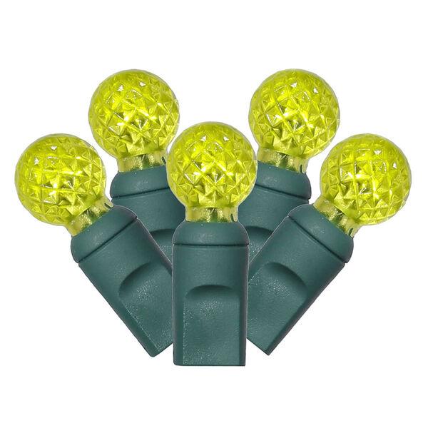 Lime 34 Foot LED Light Set with 100 Lights, image 1
