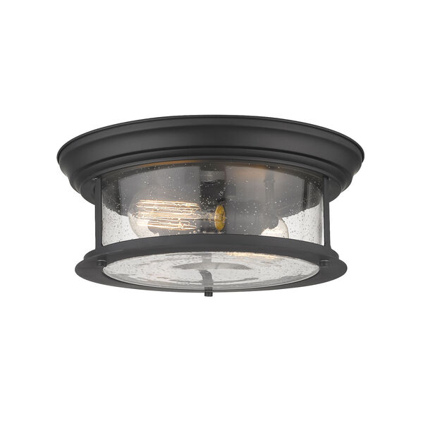 Sonna Matte Black Two-Light Flush Mount with Transparent Seedy Glass, image 1