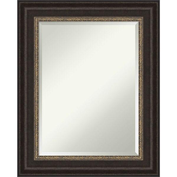 Paragon Bronze 25W X 31H-Inch Bathroom Vanity Wall Mirror, image 1