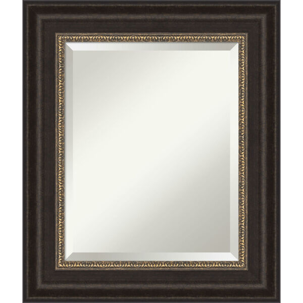 Paragon Bronze 23W X 27H-Inch Bathroom Vanity Wall Mirror, image 1