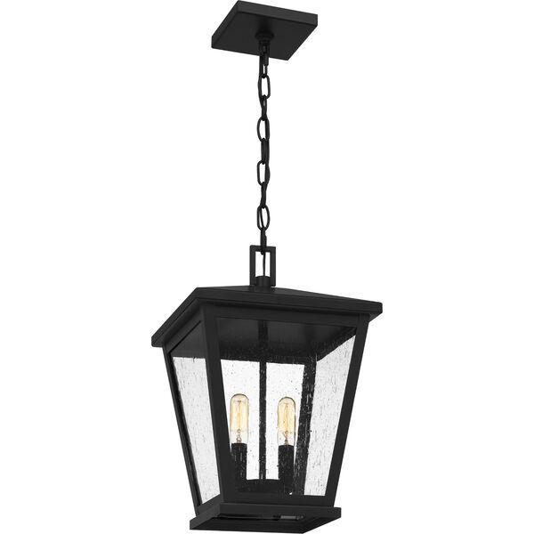 Joffrey Matte Black Two-Light Outdoor Pendant, image 5