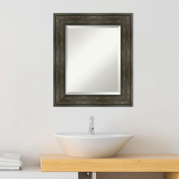 Rail Brown 22W X 26H-Inch Bathroom Vanity Wall Mirror, image 3