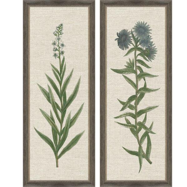Blue Botanicals Green Framed Art, Set of Two, image 2