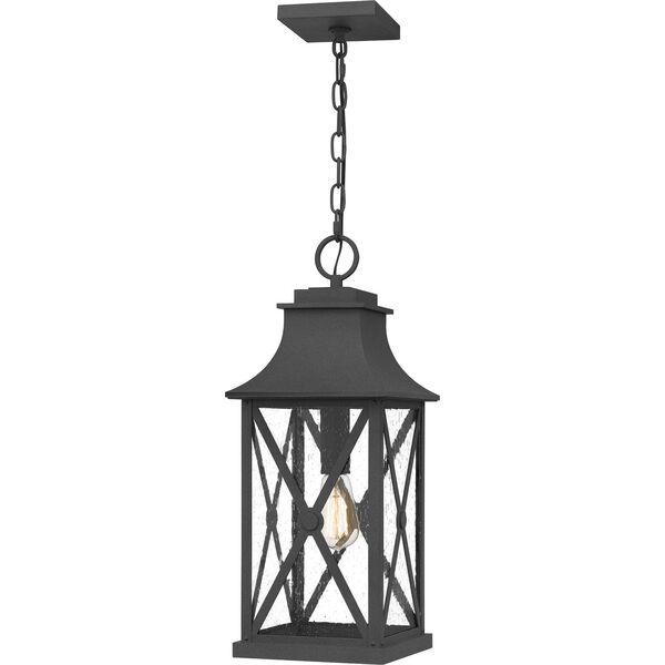 Ellerbee Mottled Black One-Light Outdoor Pendant, image 1