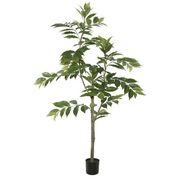 5 Ft. Potted Nandina Tree, image 1