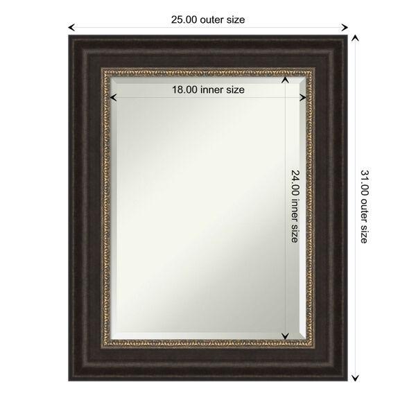 Paragon Bronze 25W X 31H-Inch Bathroom Vanity Wall Mirror, image 6