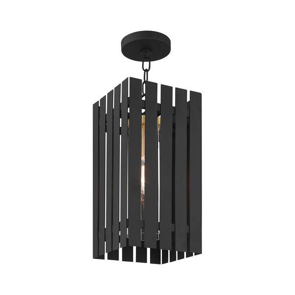 Greenwich Black and Satin Brass One-Light Outdoor Pendant Lantern, image 5