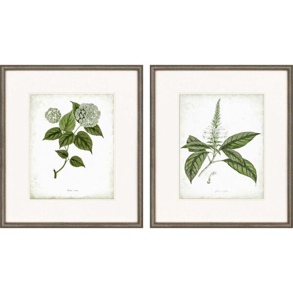 Sage Botanicals I Neutral Framed Art, Set of Two, image 2