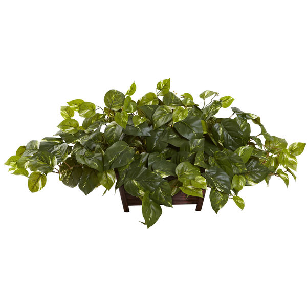 Green Pothos with Rectangle Decorative Planter, image 1