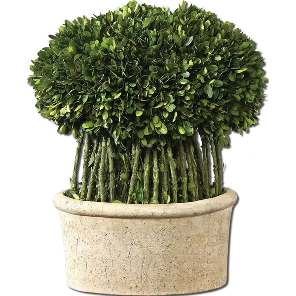 Preserved Boxwood, Willow Topiary Botanical, image 1