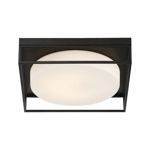 Rover Black 15-Inch Integrated LED Flush Mount, image 6