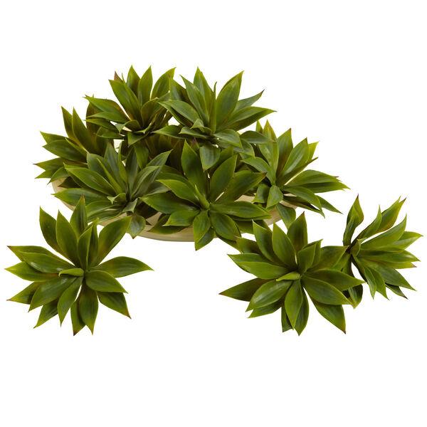 Green Mini Agave Succulent Plant, Set of 12, image 1