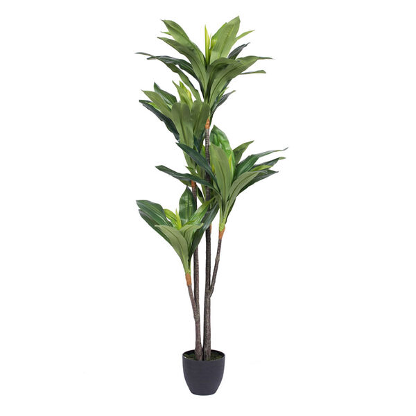 60 In. Real Touch Dracaena, image 1