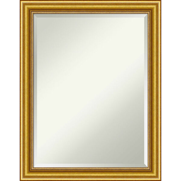 Townhouse Gold 22W X 28H-Inch Decorative Wall Mirror, image 1
