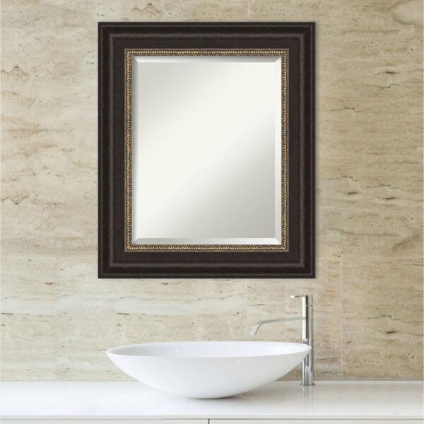 Bronze 22W X 26H-Inch Bathroom Vanity Wall Mirror, image 5