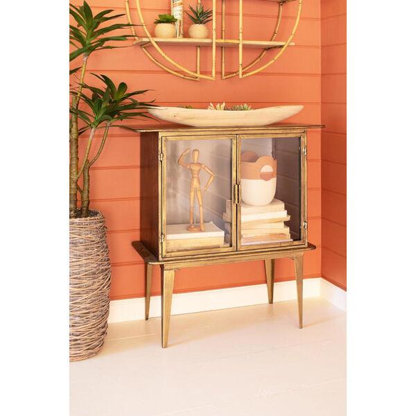 Antique Brass Glass Two Door Cabinet, image 3