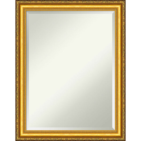 Colonial Gold 22W X 28H-Inch Decorative Wall Mirror, image 1