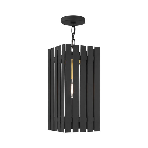 Greenwich Black and Satin Brass One-Light Outdoor Pendant Lantern, image 1
