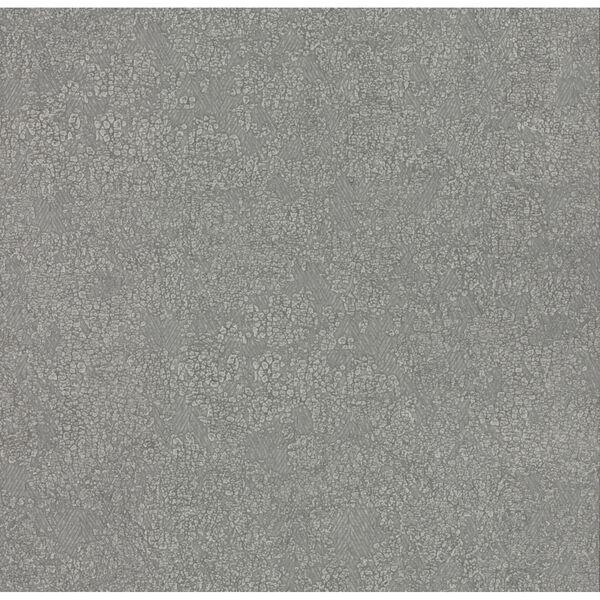 Antonina Vella Elegant Earth Dark Gray Weathered Textures Wallpaper, image 2