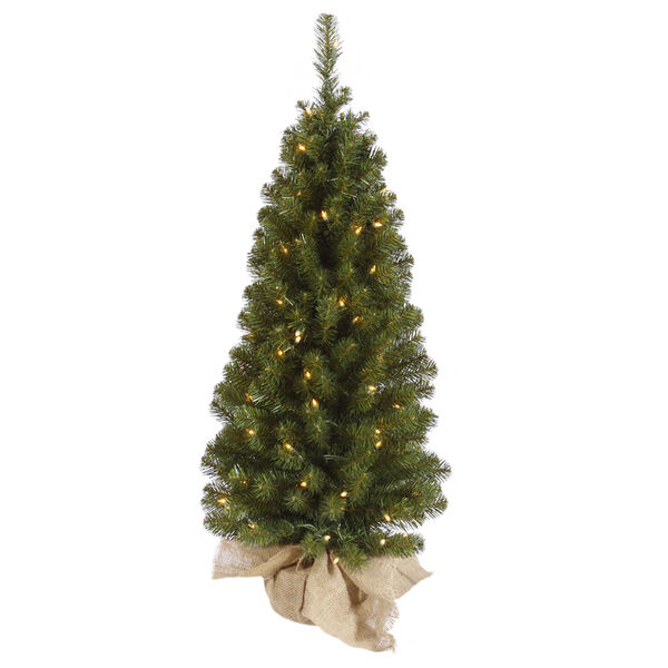 Felton Pine Green 42-Inch Tree with 100 Clear Lights, image 1